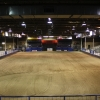 View from the back of the arena